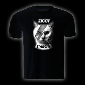 tsh-21-ziggy-starcat