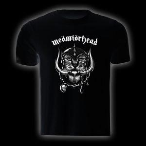 tsh 37 - meowtorhead